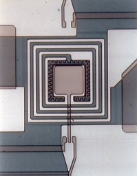 The input coil of the IMPUC magnetometer. The 4-fold pick-up coil is connected with the 4 dark pads.